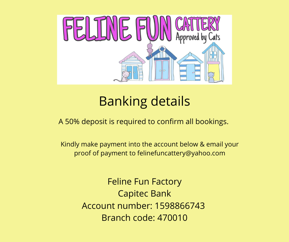 Banking details for Feline Fun Cattery
